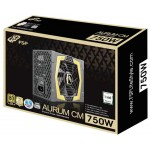 FSP Group Aurum CM 750W
