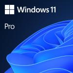 Microsoft Windows 11 Pro Eng (64-bit OEM)